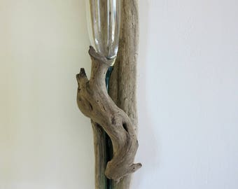 Mothers day gift: vase/champagne flute and drift wood / wooden wall float, nature and living vase