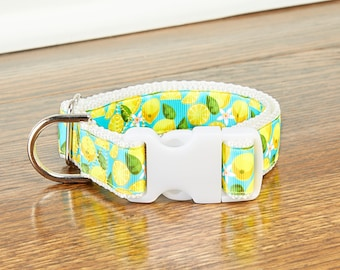 Lemons and Blossoms With Blue Background 1 Inch Dog Collar with Gray Teal or White Backing