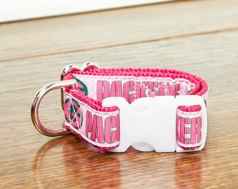 Pink Teal Pink and Green Impressionism Painted Flower Garden 1 Inch Dog Collar and Leash Set With Gray or White Backing