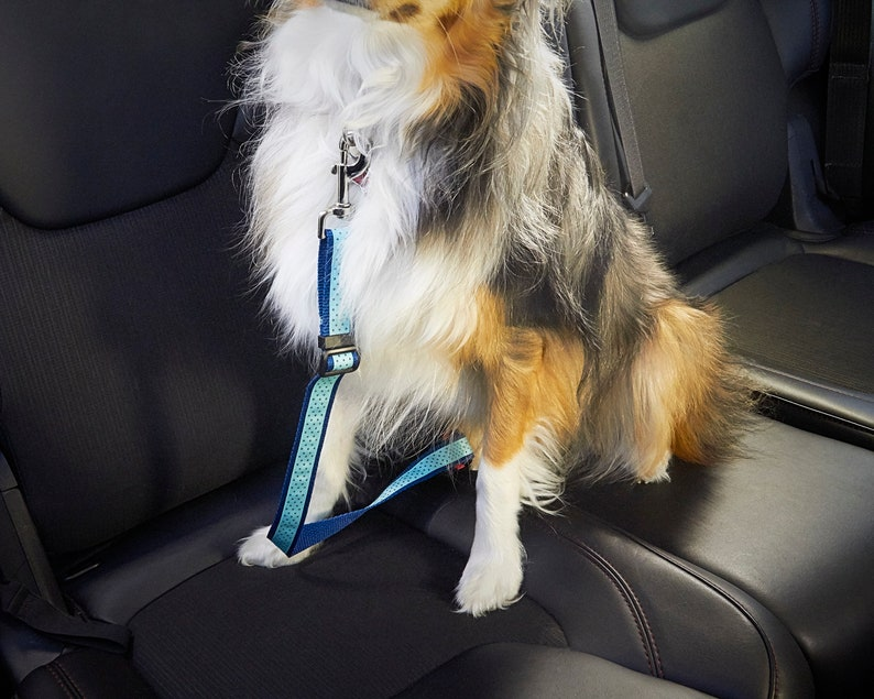 or White Backing Gray Navy New York Yankee Multi Logo Unofficial Customizable 1 Inch Dog Seat Belt With Black