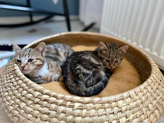 fairtrade /& vegan Rattan handwoven cat basket with black and white block print pillow