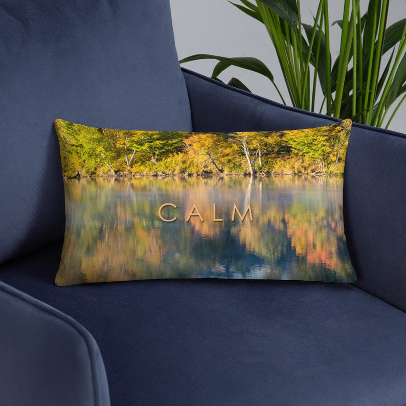 Calm Relax Pillow Cover and Insert  Lakehouse Cottage Decor image 0