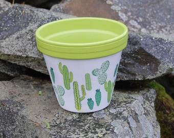 Green Cacti Terracotta Plant Pot and Dish