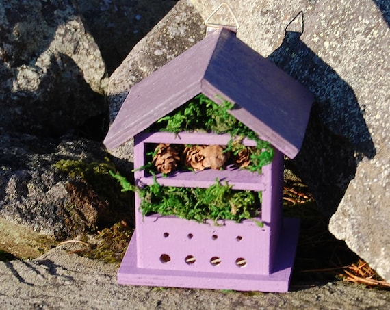 Two Tone Purple Wooden Insect House - Bug Hotel - -Beasts Vacation - Bee House - Gardening Gifts - Garden - Scottish Gifts - Scotland-