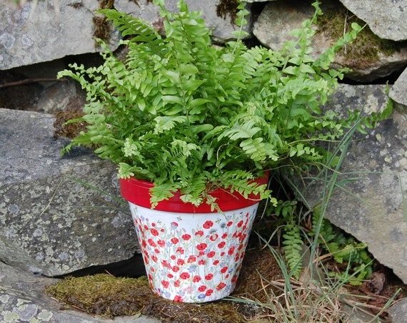 Red Poppies & Meadow Flowers Terracotta Flower Plant Pot - Garden Gift - Housewarming - Decor - Planter - Gardener