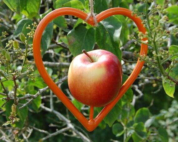 Steel Heart Orange Bird Feeder - Gardening Gifts - Scottish Gifts - Birds - Apple - Balls - Scotland - Gardener - Nature - Garden