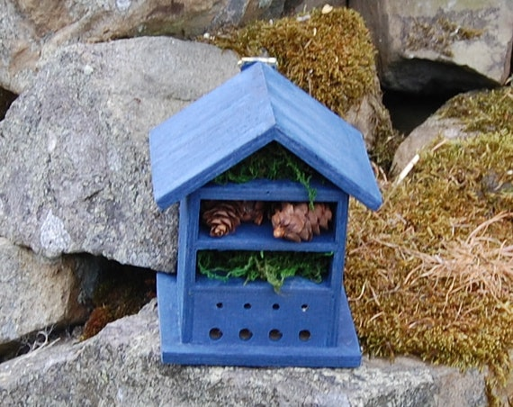 Deep Blue  Wooden Insect House - Bug Hotel - -Beasts Vacation - Bee House - Gardening Gifts - Garden - Scottish Gifts - Scotland