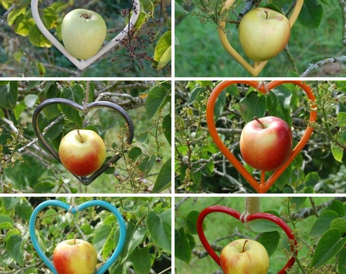 Steel Heart Bird Feeder Choose Your Own Colour  - Gardening Gifts - Scottish Gifts - Birds - Apple - Balls - Scotland - Gardener - Garden