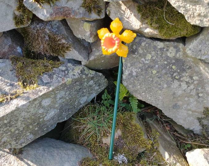 Daffodil Plant Pot Decoration
