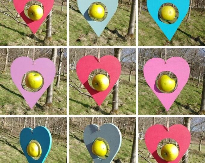 Choose Your Own Colours -  Heart Wooden Bird Feeder - Fruit, Apple, Fat Balls, Suet