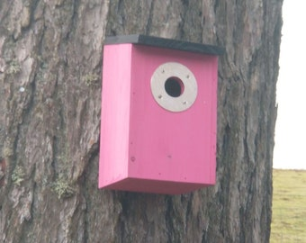 Two-Tone Hot Pink & Dark Slate Grey Wooden Bird House Nest Box