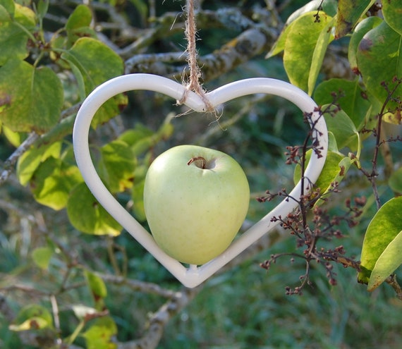 Steel Heart Country Cream Bird Feeder - Gardening Gifts - Scottish Gifts - Birds - Apple - Balls - Scotland - Gardener - Nature - Garden