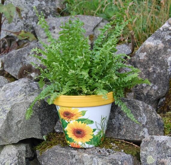 Yellow Sunflowers Terracotta Flower Plant Pot, Garden Gift, Housewarming, Decor, Planter, Gardener, Pots, Gardening, planting