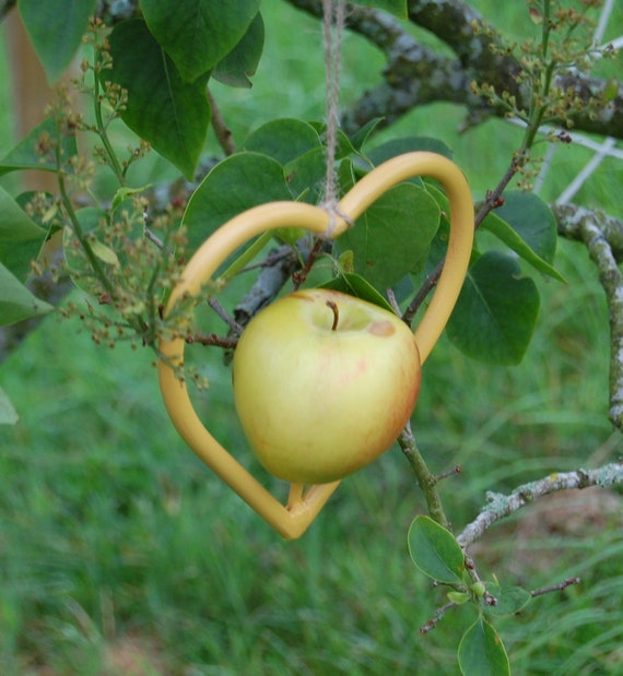 Steel Heart Mustard Yellow Bird Feeder - Gardening Gifts - Scottish Gifts - Birds - Apple - Balls - Scotland - Gardener - Nature - Garden
