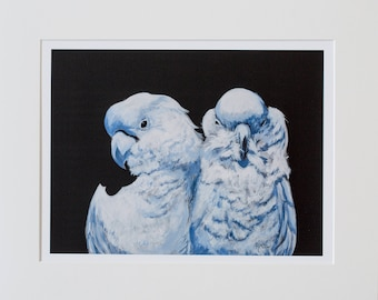Fine-Art acrylic painting of parrots giclee print