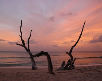 Sunset on a beach in Barbados