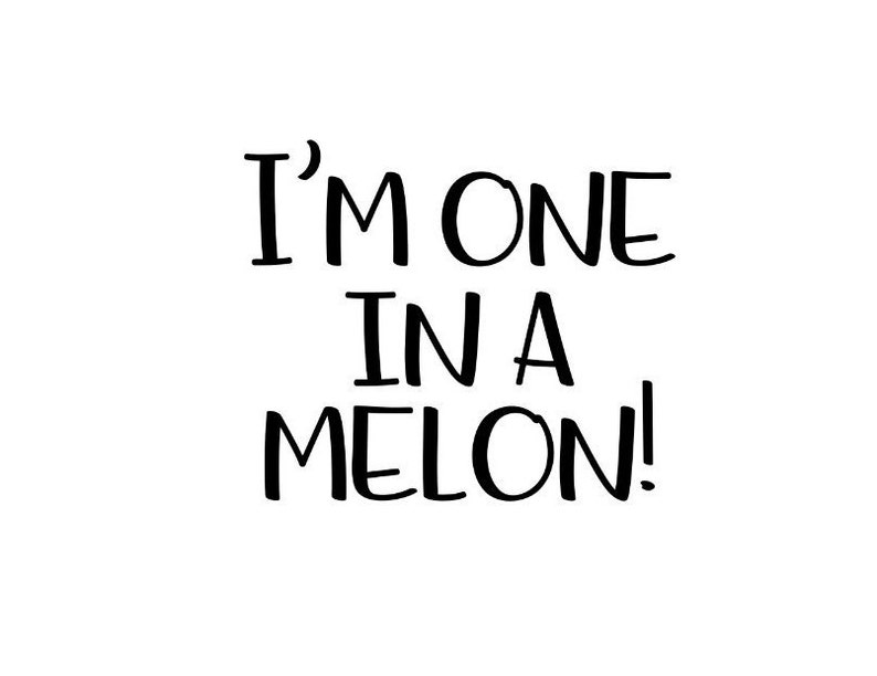 I;m one in a melon Add On