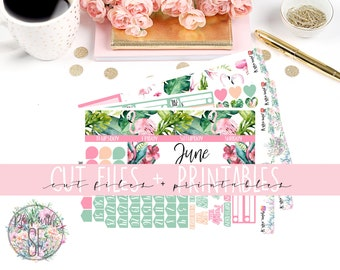 Tropical June Printable Planner Stickers/Weekly kit/for Happy Planne