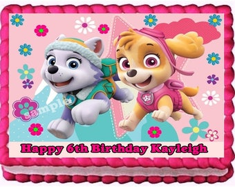 Paw Patrol Everest And Skye Edible Image Frosting Sheet Cake Topper Birthday Decoration