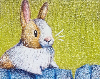 "Cocoa pad ""Fence rabbit"""