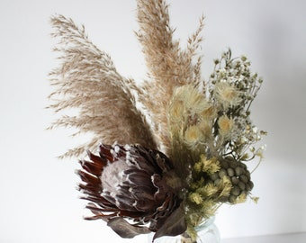 Dried flower bunch, Protea, Pampas grass