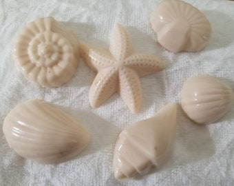 6 Sea Shell Soap Bathroom Guest Favor Gift Soaps