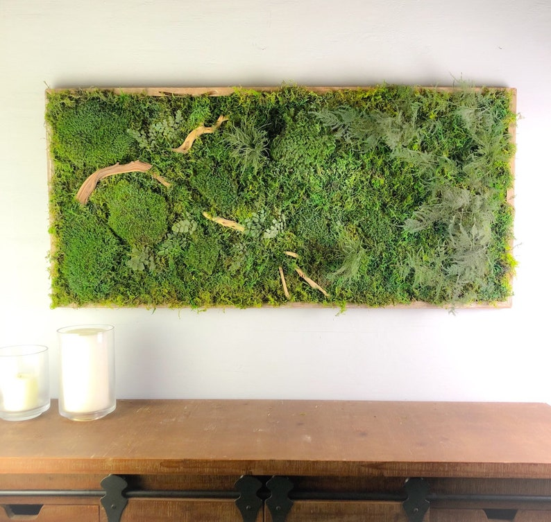 Shop Display  Moss Decor Natural Wall Art Preserved Moss image 0