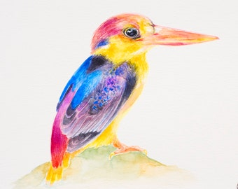 Kingfisher Painting Bird Lover Gift Kingfisher Watercolor Bird Wall Art Decor Colourful Bird Illustration Birthday Gift For Nature Lover