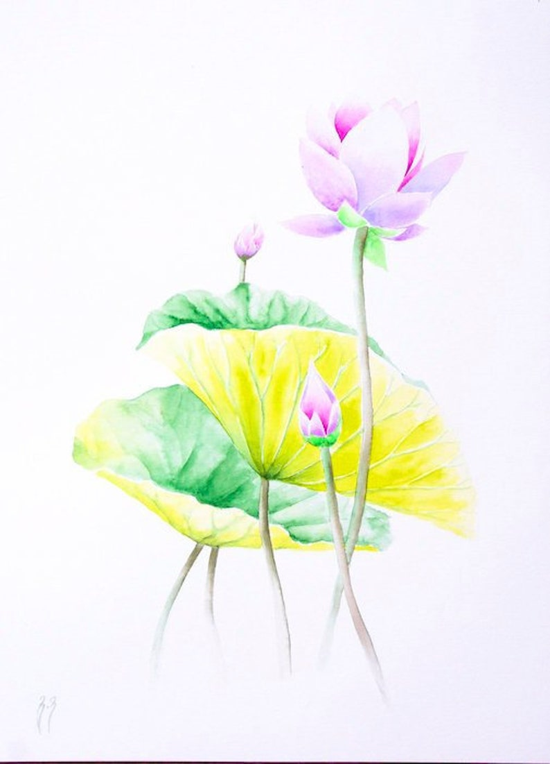 Lotus Flower Watercolor Original Zen Art Spiritual Wall Art Etsy