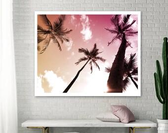 Coconut Palm Trees Photo, Hawaii, Tropical Decor Wall Art, Palm Print, Palm Tree Photo, Fine Art Photography, Large wall Art, Coconut Palm