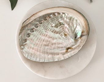 "4"" Abalone Shell, Meditation Tools, Calming Energy, Crystal Dish, for Smudging, Burning Incense"