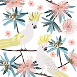 Australian Birds Sulphur Crested Cockatoo Giclee Art Print