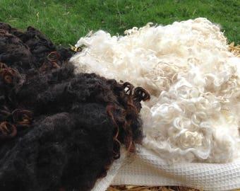150grams  Natural White  Wensleydale Fleece