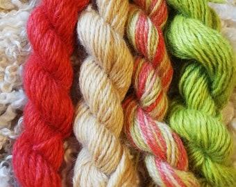 Wensleydale hand dyed aran mini hanks