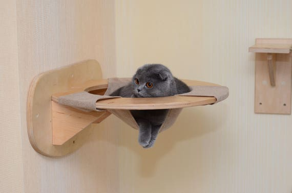 Wall furniture shelves Quirky Wall Image Joss Main Cat Hammock Wall Cat Bed Wall Mounted Cat Shelf Wall Mount Cat Etsy