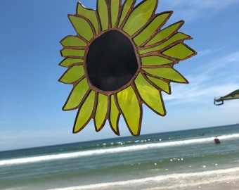 Umphreys McGee Sunflower