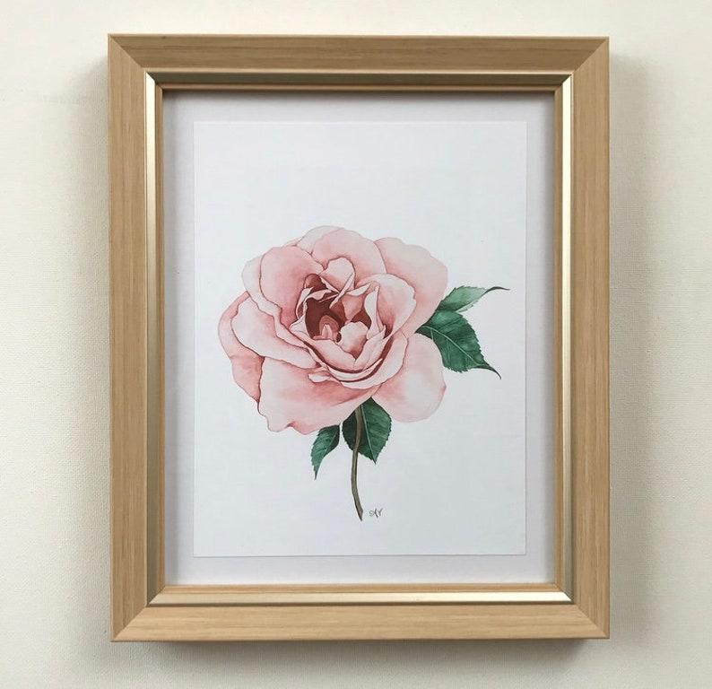 Pink Rose Watercolor Print