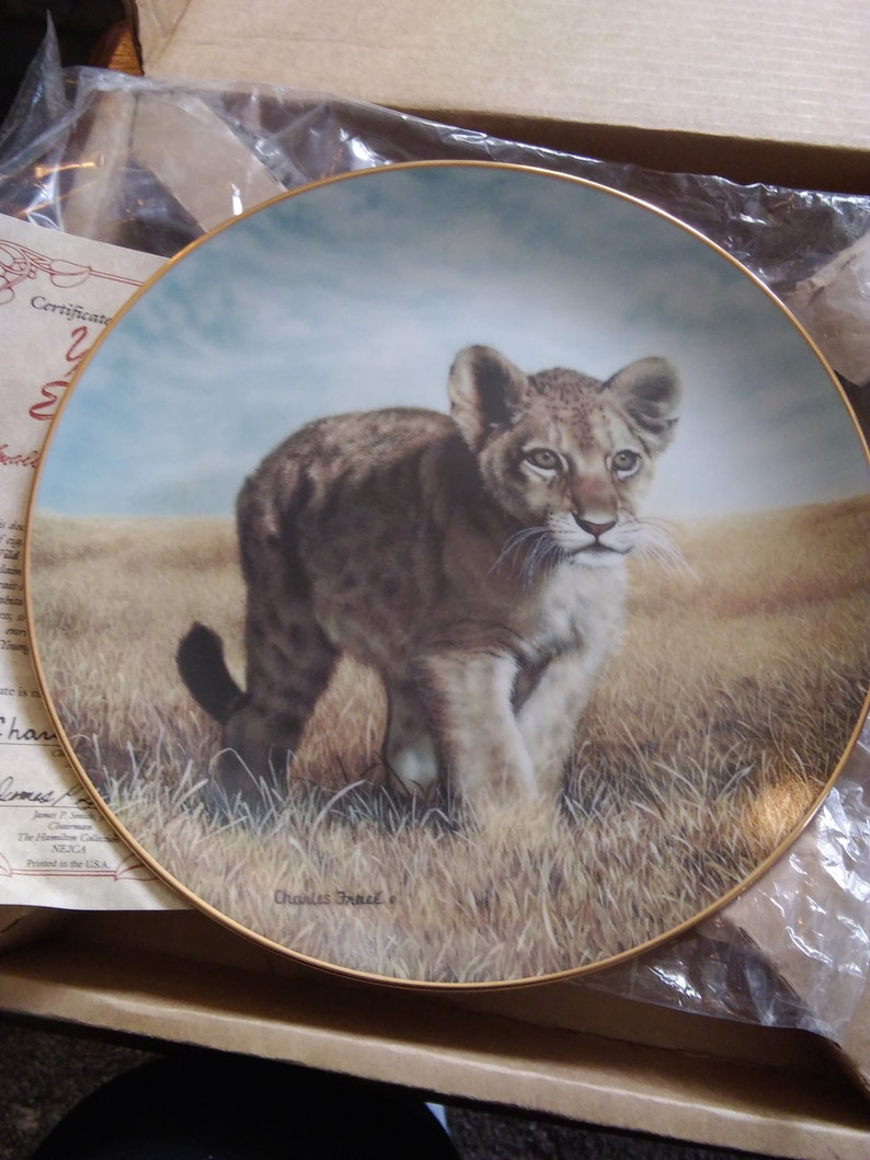 Small Wonders of the Wild Plate by Charles Frace,Young Explorer
