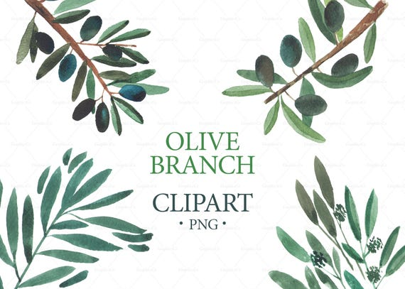 watercolor olive branch clipart wedding clipart logo rh etsy com olive branch clip art borders free olive tree branch clipart