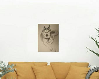 Husky original hand drawn by pencil on 29cm by 42 cm paper