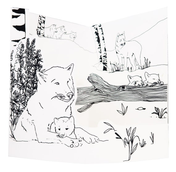 THE Wolf - coloring book pop up