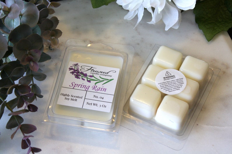 100/% Soy Candle Highly Scented Soy Melts Hand Poured Soy Tarts Soy Melts Soy Clamshell Fresh Wax Melt Spring Rain Soy Wax Melts