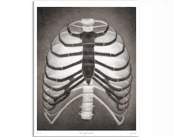 Ribcage Black and White Art Print, Anatomy Drawing, Darkness And Light, Gothic Skeleton Bones Art, Halloween Decor, Original Art, 8 x 10