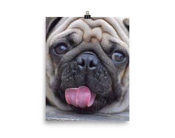 Pug Face Poster For Pug Lovers