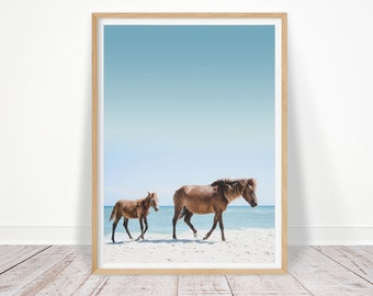 Horse Photography, Horse Print, Foal, Coastal Wall Art, Horse Wall Art, Horse Photo, Foal Photo, Printable Wall Art, Digital Download Poster