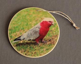 Galah Photo Ornament