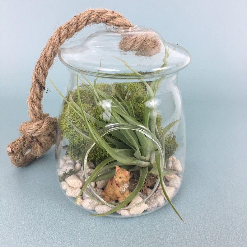 Little Critter Glass Terrarium with Rope and Tiny Fairy Animal image 0