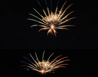 Fireworks Flowers Print #4 - Great Christmas gift for anyone!