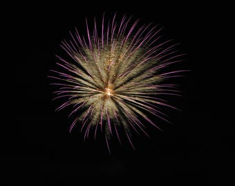 Fireworks Flowers Print #5 - Great Christmas gift for anyone!