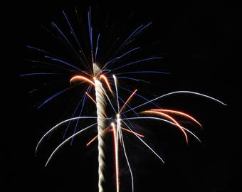 Fireworks Flowers Print #2 - Great Christmas gift for anyone!